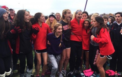 Women's Cross Country Advances to State Final