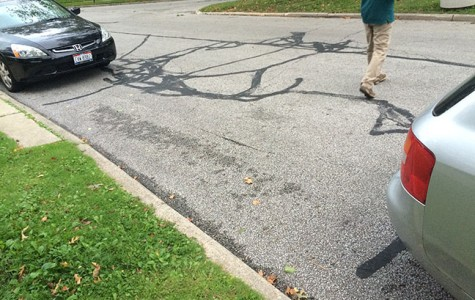 An Ode to Shaker Parkers