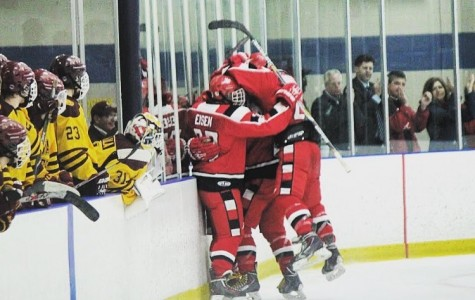 Raider hockey players celebrate after senior Peter Shick ties the game with a third period goal against Walsh Jesuit in the District Semi Final last Tuesday. The Raiders will play US tonight in the District Final.