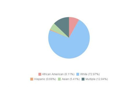 Demographics of Upper Level Classes