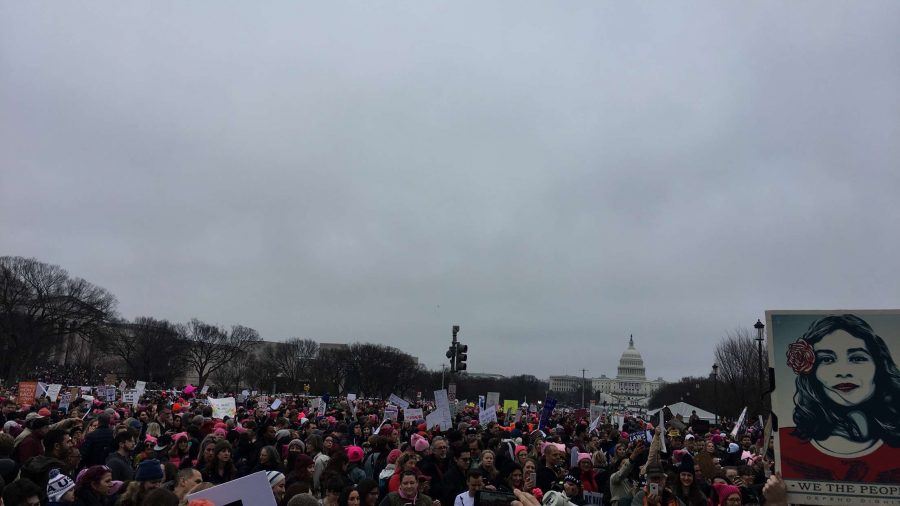 Protesters+gather+at+the+Women%27s+March+in+Washington+D.C.