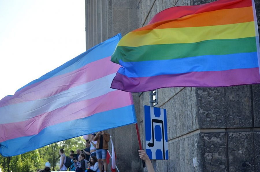 The transgender flag represents the pride and rights of the transgender community.