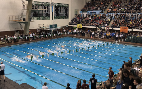 Over 30 teams competed at Cleveland State University this past weekend for the Northeast Division 1 swimming District Championships.
