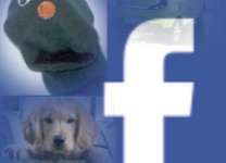 Facebook Offers Great New Ways to Stay Busy During Quarantine
